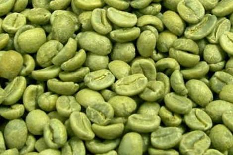 Zielona Kawa Zastosowanie i Właściwości