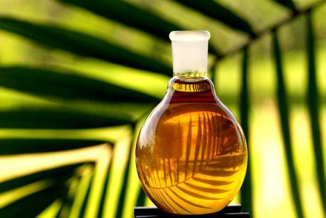 Olej Palmowy Zastosowanie i Właściwości