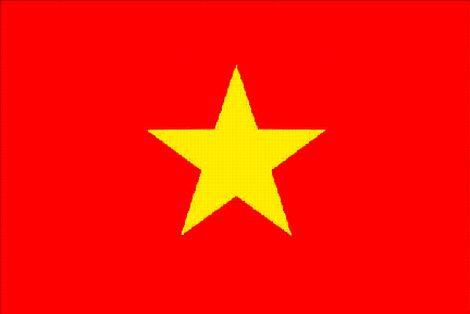 Obowiązująca Flaga Wietnamu